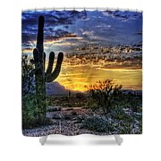 Sonoran Sunrise  Shower Curtain by Saija  Lehtonen