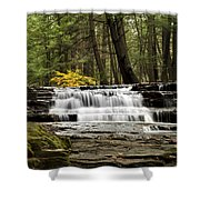 Soothing Waters Shower Curtain by Christina Rollo
