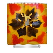 Soul Of A Tulip Shower Curtain by Sonali Gangane