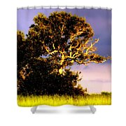 Sounds Of Topsail Shower Curtain by Karen Wiles