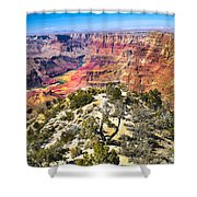 South Rim From The Butte Shower Curtain by Robert Bales
