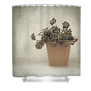 Souvenirs De Demain Shower Curtain by Taylan Soyturk