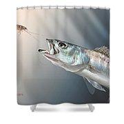 Speck Snack Shower Curtain by Hayden Hammond