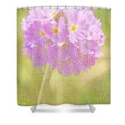 Sphere Florale - 01tt01a Shower Curtain by Variance Collections