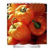 SPICE IT UP Shower Curtain by KAREN WILES