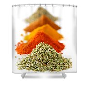 Spices Shower Curtain by Elena Elisseeva