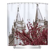 Spring at the Temple Shower Curtain by Chad Dutson