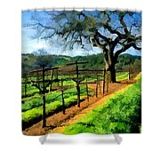 Spring In The Vineyard Shower Curtain by Elaine Plesser