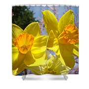 Spring Orange Yellow Daffodil Flowers Art Prints Shower Curtain by Baslee Troutman