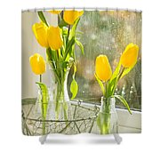 Spring Tulips Shower Curtain by Amanda And Christopher Elwell