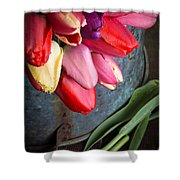 Spring Tulips Shower Curtain by Edward Fielding