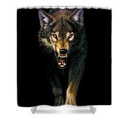 Stalking Wolf Shower Curtain by MGL Studio - Chris Hiett