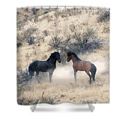 Stand-Off Shower Curtain by Mike  Dawson