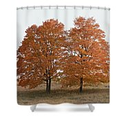 Standing Together Shower Curtain by Penny Meyers