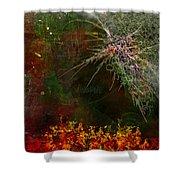 Star Burst Shower Curtain by Christopher Gaston