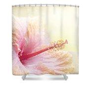 Stardust Shower Curtain by Sharon Mau