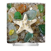 Starfish Fine Art Photography Seaglass Coastal Beach Shower Curtain by Baslee Troutman