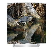 STATUES Shower Curtain by Skip Willits
