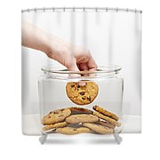 Stealing cookies from the cookie jar Shower Curtain by Elena Elisseeva