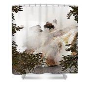 Steamy Bison Shower Curtain by Sue Smith