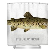 Steelhead Trout Shower Curtain by Aged Pixel