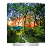Stepping Stones to the Light Shower Curtain by Marvin Spates