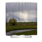 Storm Break Shower Curtain by Mike  Dawson