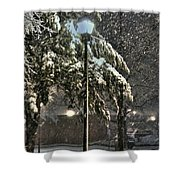 Street Lamp In The Snow Shower Curtain by Benanne Stiens