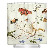 Study Of Insects And Flowers Shower Curtain by Ferdinand van Kessel