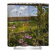 Summer Breeze Shower Curtain by Debra and Dave Vanderlaan