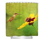 Summer Flight Shower Curtain by Darren Fisher