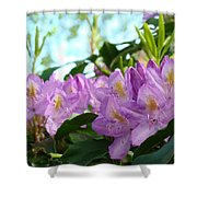 Summer Rhodies Flowers Purple Floral Art Prints Shower Curtain by Baslee Troutman