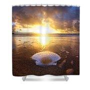 Summer Solstice Shower Curtain by Sean Davey