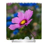 Summer Wild Blooms Shower Curtain by Matt Malloy