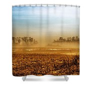 Sunday Afternoon Shower Curtain by Tom Druin