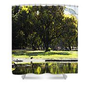 Sunday In The Park Shower Curtain by Anne Mott