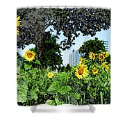 Sunflowers Outside Ford Motor Company Headquarters In Dearborn Michigan Shower Curtain by Design Turnpike
