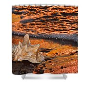 Sunlights Glow Shower Curtain by Frozen in Time Fine Art Photography