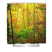 Sunlights Warmth Shower Curtain by Frozen in Time Fine Art Photography