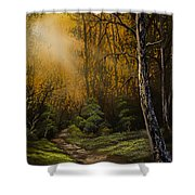 Sunlit Trail Shower Curtain by C Steele