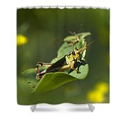 Sunny Green Grasshopper Shower Curtain by Christina Rollo