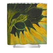 Sunny Side Up Shower Curtain by Cori Solomon