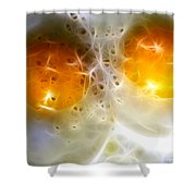 Sunny Side Up Shower Curtain by Wingsdomain Art and Photography