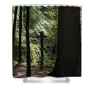 Sunrise Prayer Shower Curtain by Christina Rollo