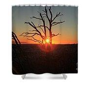 Sunset Bulls Eye Shower Curtain by Adam Jewell