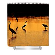 Sunset Silhouette Shower Curtain by Al Powell Photography USA