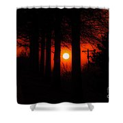 Sunset Silhouette Painterly Shower Curtain by Andee Design