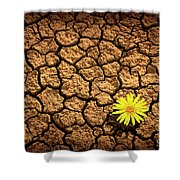 Survivor Shower Curtain by Carlos Caetano