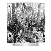 Swampland Shower Curtain by Carey Chen