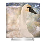 Swan Journey Shower Curtain by Kathy Bassett